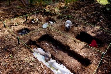 Site, installation, Re-fraction, Waikato Sculpture Trust